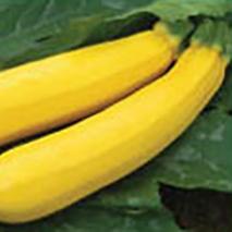 Sebring Yellow